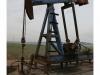 OIL - Oil - Oil